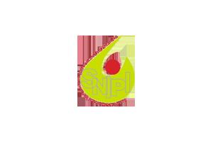Logotipo do Sistema Nacional de Intervenção Precoce na Infância